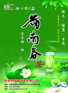 绿色大气风格 茶叶 宣传单 下载