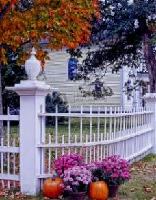 白色篱笆的花园