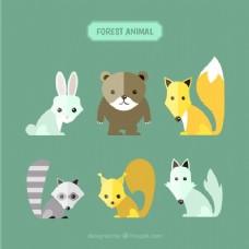 集可爱的森林动物在不同的颜色