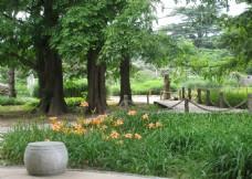 南植物园风景