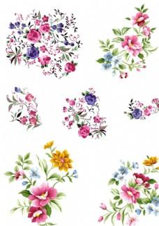 鲜花 花朵