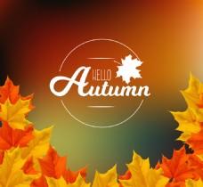 秋天的树叶模糊背景