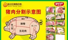 猪肉分割示意图