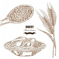 小麦与煎饼素描插画