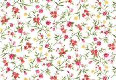 无缝水彩花卉图案