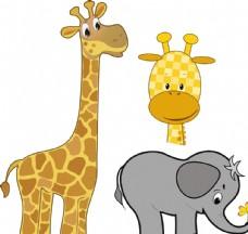 长颈鹿 大象