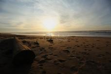 日落期间布朗弄脏岸