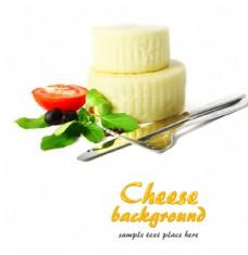 奶酪20图片