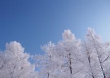 东北的冬天