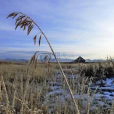 霜冻和旧谷仓