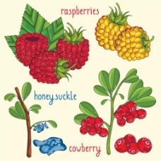 菠萝和红色果子图片