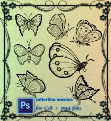 漂亮的蝴蝶图案Photoshop笔刷