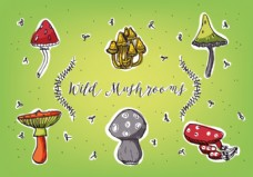各类蘑菇背景矢量免费采集