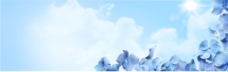 蓝色花朵背景