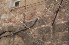 墙上的电线