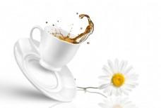 沙拉啤酒茶图片