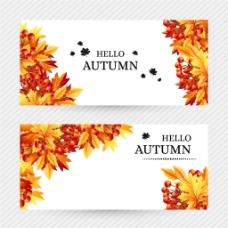 秋天枫叶横幅背景图片