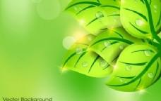 绿叶春背景