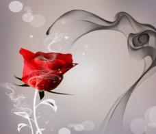 烟雾玫瑰花壁纸
