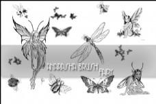蝴蝶、蜻蜓、妖精图形photoshop笔刷素材