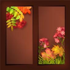 秋天花朵草木背景设计图片
