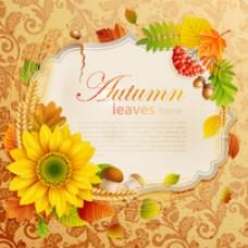 带叶和小麦的秋框架