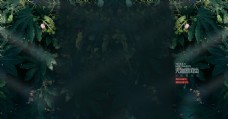 秘神森林淘宝背景