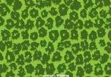 绿豹花纹矢量