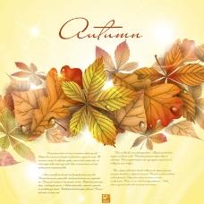 秋天背景设计素材图片