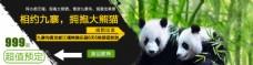 九寨沟熊猫乐园旅游淘宝关联链接图片