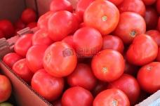 熟透圆润的番茄