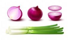 4款紫色洋葱和大葱矢量素材