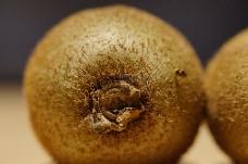 有维生素的猕猴桃