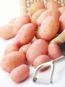 新鲜土豆图片