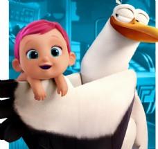 白色鸟怀抱婴儿