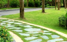 园林石板路
