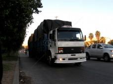 Truck_Assorted_4312(3).JPG