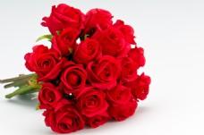 红色玫瑰花花束图片