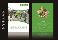 农副产品画册封面封底内页简约清新