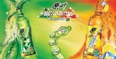 原葉綠茶冰紅茶廣告