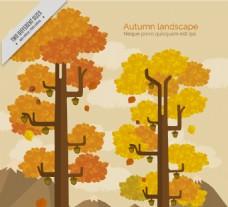 秋季景观的高树的背景