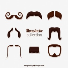 不同类型的胡子收藏