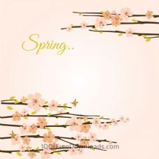 带花枝的矢量春天背景。