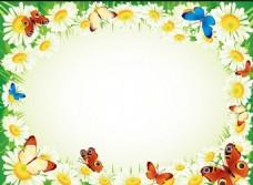 花朵蝴蝶边框