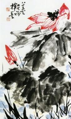 水彩国画图片,水墨画 水彩画 花 海棠花 孔雀-图行