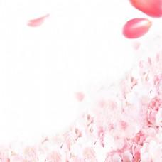水墨浅粉花瓣