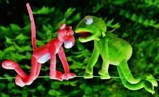 青蛙与豹子