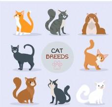 8只可爱猫咪设计矢量素材