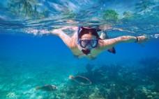 潜海 海底世界