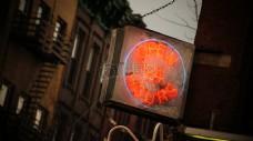 新,约克,符号,霓虹灯,霓虹灯,标志,开放,24小时,一如既往的开放,24小时